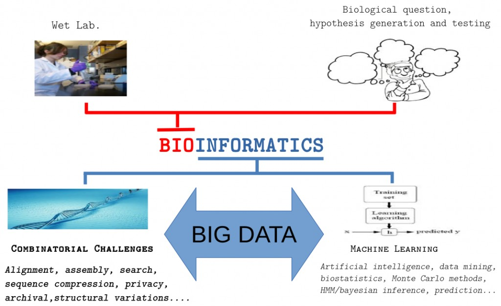 My_bioinformatics